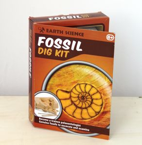 Fossil Dig Kit - outdoor toys & games