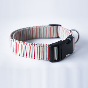 Boo Dog Collar