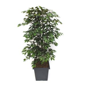 Artificial Ficus Tree - living & decorating