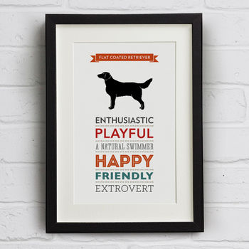 Flat Coated Retriever Dog Breed Traits Print