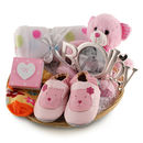 Deluxe Girl New Baby Gift Basket