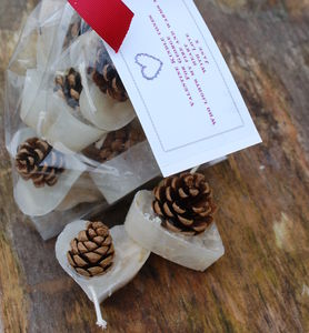 Personalised Heart Shaped Pine Cone Firelighters - living room