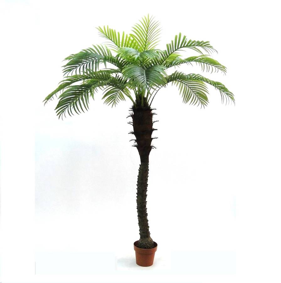 artificial outdoor tropical palm tree by artificial landscapes. Black Bedroom Furniture Sets. Home Design Ideas