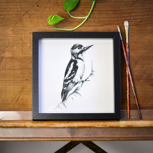 Woodpecker Print - drawings & illustrations