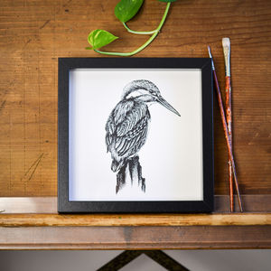 Kingfisher Print - drawings & illustrations