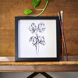 Sweet Peas Print - nature inspired art