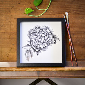 Peony Print - drawings & illustrations