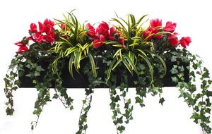 Artificial Cyclamen And Dracaena Window Box