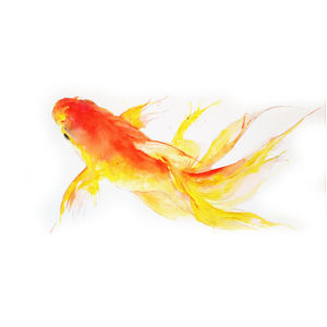 Golden Fish - paintings & canvases