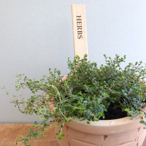 Large Personalised Wooden Herb Plant Labels
