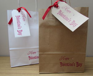 Valentines Day Gift Bag And Tag Set : Assorted Sizes