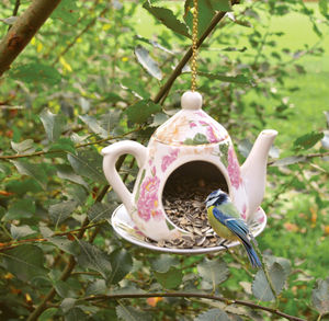 Hanging Teapot Bird Feeder - less ordinary garden ideas