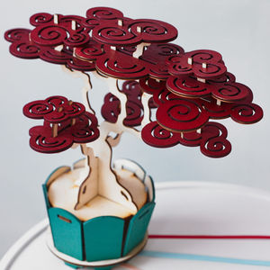 Flat Packed Cherry Bonsai Tree Kit - gifts for her