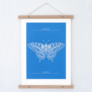 Swallowtail Butterfly Print - shop by personality