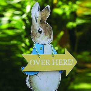 Easter Peter Rabbit Egg Hunt Kit - easter egg hunt
