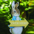 Easter Peter Rabbit Egg Hunt Kit