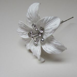 Lily Crystal Hair Pin - whats new