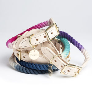 Handmade Ombre Rope And Leather Dog Collar - dog collars