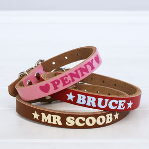 Personalised Colourful Dog Collar - dogs