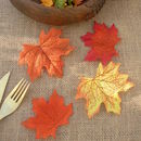 Set Of Twelve Decorative Autumn Leaves