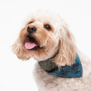 Liberty Camo Dog Bandana - clothes