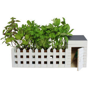 Indoor Allotment Planter Set