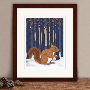 Limited Edition Squirrel Print - animals & wildlife