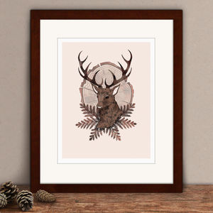 Limited Edition Stag Print - animals & wildlife