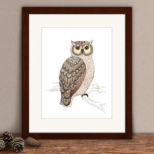 Limited Edition Owl Print - animals & wildlife