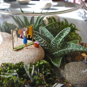A Womans Work Is Never Done Terrarium Kit - flowers & plants