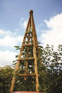 Large Wooden Garden Obelisk - garden furniture