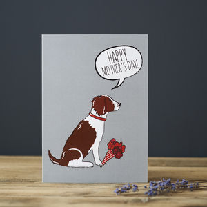 Springer Spaniel Mother's Day Card