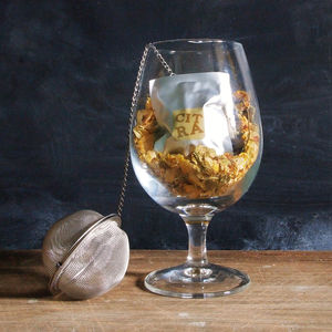 Hop Infusion Starter Kit For Beer - gifts to eat & drink
