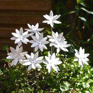Handpainted Daisy Sculptures Set Of 10 - gardener