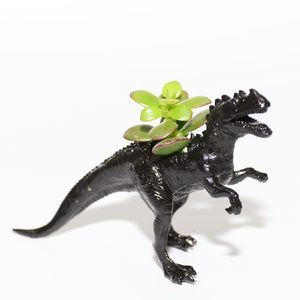 Ceratosaurus Dinosaur Planter With Plant - gifts under £25 for him