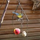 Bluetit Fat Ball Birdfeeder