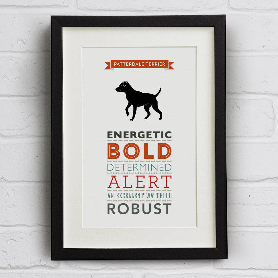 Patterdale Terrier Dog Breed Traits Print