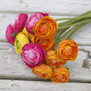 Bouquet Of Ranunculus - room decorations