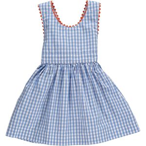 Blue Gingham Dress - dresses