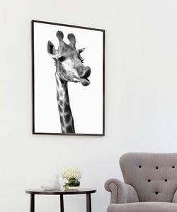 Joe The Giraffe, Canvas Art - contemporary art