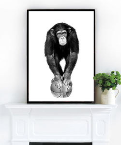 Chimp On A Ball, Photographic Art - paintings & canvases