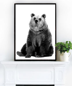 Kids Bear, Black And White Photographic Art - pictures & prints for children
