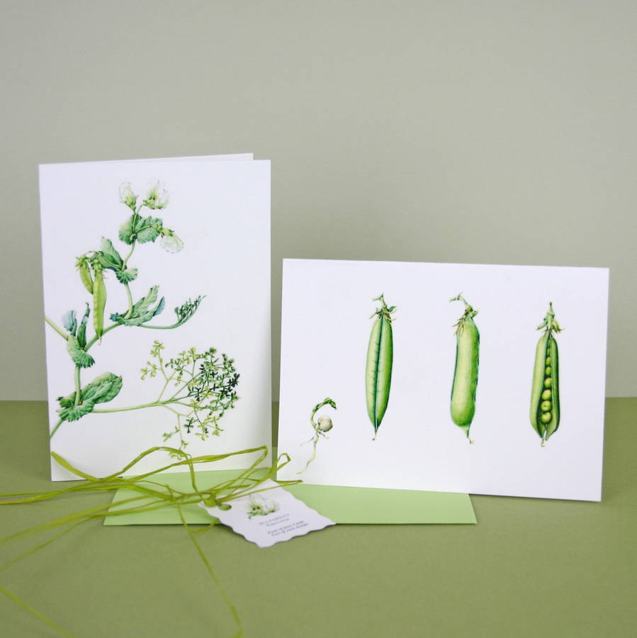 Pack Of Four 'Parsley Pea' Cards