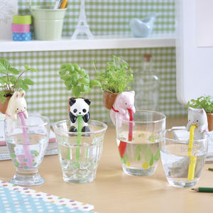 Self Watering Animal Plant Kit - stocking fillers for her