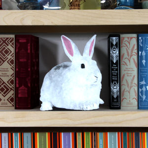 Cardboard Flat Pet Rabbit - easter home