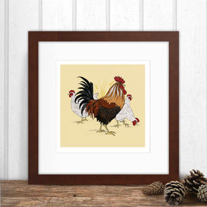 Limited Edition Chickens Print - animals & wildlife