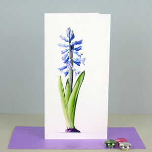 ' Hyacinth ' Botanical Card