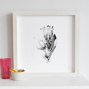 Monochrome Botanical Protea Print One - contemporary art