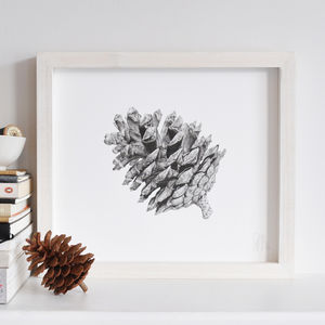 Botanical Pinecone Print - art by category