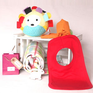 Hedgehog New Baby Gift Hamper
